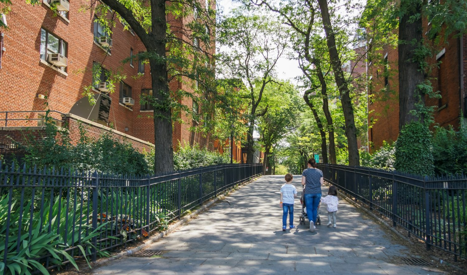 Opinions and Perceptions of Residents in New York City Public Housing